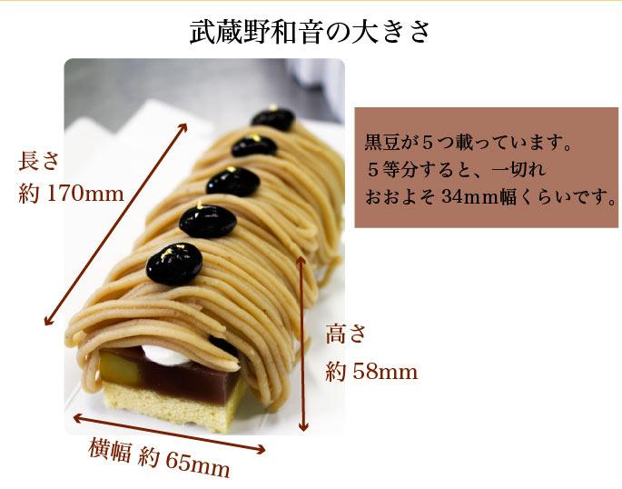 �礭���ܰ¡���17����6.5�߹⤵��5.8cm
